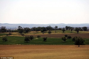 Australian Countryside
